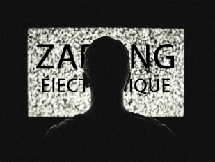 bouton zapping électronique  .png